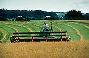 01 AUGUST 1986, BATTLE LAKE, MINNESOTA, USA: Cutting hay on a dairy farm in Battle Lake, MN, Aug. 1986..PHOTO BY JACK KURTZ