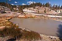 Turbulent pools of hot, muddy water; found at Mud Volcano.   Yellowstone National Park, Wyoming, USA.