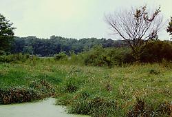 Moraine View State Park, LeRoy Illinois