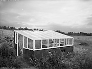 31/08/1953<br /> 08/31/1953<br /> 31 August 1953<br /> Special at Basil Peterson's, Gorteen Lodge, Delgany Co. Wicklow for McConnells.