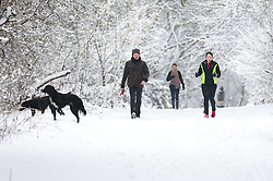 © Licensed to London News Pictures. 01/02/2019. London, UK. Runners and dog walkers on Hampstead Heath, north London, after snow fell overnight. Photo credit: Rob Pinney/LNP