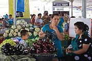 Uzbekistan, Tashkent. Chorsu Bazaar. Vegetables.