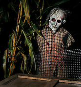 Haunted Maze on Sauvie Island.