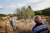 "PERDASDEFOGU, SARDINIA, ITALY - 29 JUNE 2013: (R-L) Brothers Vitalio (87, a retired postman) and Adolfo Melis (90) enter their vegetable garden in Abbafittania, in the outskirts of Perdasdefogu, the day before Claudia Melis' 100th birthday in Perdasdefogu, Italy, on June 29th 2013.<br /> <br /> Last year, the Melis family entered the Guinness Book of World Records for having the highest combined age of any nine living siblings on earth — today more than 825 years. The youngest sibling, Mafalda – the ""little one"" – is 79 years old.<br /> <br /> The Melis siblings were all born in Perdasdefogu to Francesco Melis and Eleonora Mameli, who had a general store. Consolata, 106, is the oldest, then Claudia, 100; Maria, 98; Antonino, 94; Concetta, 92; Adolfo, 90; Vitalio, 87; Fida Vitalia, 81; and Mafalda, the baby at 79. Their descendants now account for about a third of the village."