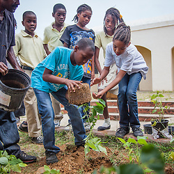Arbor Day Project at E. Benjamin Oliver