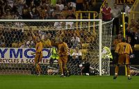 Photo: Greig Cowie.<br /> 08/08/2003.<br /> Pre-Season Football Friendly. Wolverhampton Wanderers v Boavista.<br /> Steffen Iversen celebrates his first goal for wolves