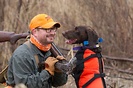 Bob St. Pierre takes moment to praise his GSP, Esky, while hunting pheasants on a Minnesota public hunting area.