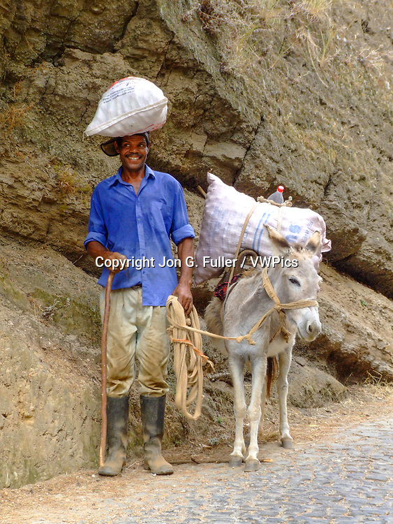 A Cabo Verdean farmer and his donkey split the load.  Santo Antao, Republic of Cabo Verde, Africa.