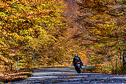 Motorcyclist on rural autumn road, White Mountains National Forest, New Hampshire, USA.