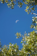 moon in daytime