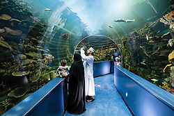 Aquarium in Sharjah in United Arab Emirates