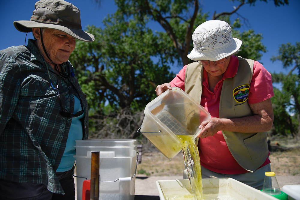 rer050817i/NM&amp;West/May 8, 2017/Albuquerque Journal<br /> recent graduates of the Rio Grande Nature Center&rsquo;s volunteer program began training at the discovery pond on how to best teach student of all ages how to identify aquatic micro invertebrates including species such as larva that eventually turns into a dragonfly, and  tadpoles. Pictured former retired teachers Martha Holmen(Cq),left, and  Margaret Kircher(cq) preparing to study species collected from the discovery pond. <br /> Roberto E. Rosales/Albuquerque Journal