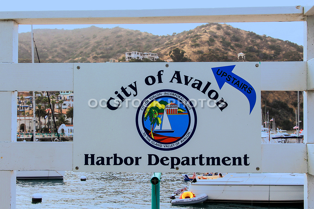 Avalon Harbor Department Sign