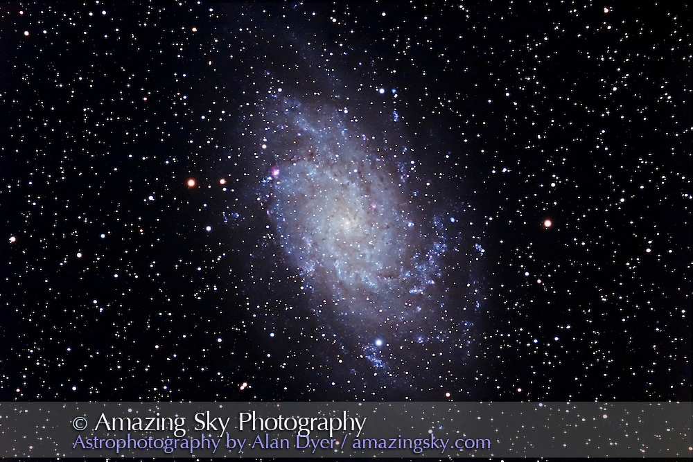 M33 Galaxy, with 5-inch apo refractor at f/6, with Canon 20Da camera at ISO 400. Stack of four 16-minute exposures. Taken from home on Nov. 20, 2006 on a superb night, very transparent and no aurora at all. Near perfect night. Guidetstar was lost for fifth exposure -- wind blew dewcap in front of eFinder guider lens. And seeing bloated up a bit more for the 2 to 4th exposures.