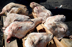 Cape Town-180906 Sheep head shaved and ready to be thoroughly scrubbed and rinsed well to remove all hairs. The Sheep head also know as Smiley is very popular in the township it used to be cooked only if there was traditional cremony nowadays there are many places that clean and sell this delicacy,cooked or uncooked Sheep head cost R70 and half R35 Pictures Ayanda Ndamane/African/news/agency ANA