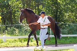 Manuel Campilho, (POR), Aonito, Beduino Da Lagoalva, Bucarine Da Lagoalva, Coracao, Xisto - Horse Inspection Driving - Alltech FEI World Equestrian Games™ 2014 - Normandy, France.<br /> © Hippo Foto Team - Leanjo de Koster<br /> 25/06/14