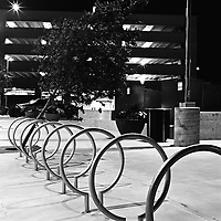 Lopsided tree and bicycle posts in Denver near the Millennium Bridge, 2010.