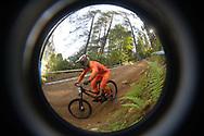 Ciclismo mountain bike world cup  dowhill Uomini elite  , Daolasa Val di Sole 24 Agosto  2017 © foto Daniele Mosna