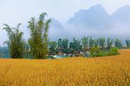 Vietnam Images-Landscape-nature-Cao Bang. phong cảnh việt nam-hoàng thế nhiệm