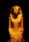 Hatshepsut was the fifth pharaoh of the eighteenth dynasty of Ancient Egypt.