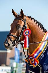 Zoer Albert, (NED), Florian P<br /> Finale 5 jarige springpaarden <br /> KWPN Paardendagen Ermelo 2015<br /> © Hippo Foto - Leanjo de Koster
