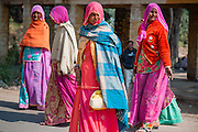 Indian women in colorful saris (India)