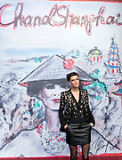 Anna Mouglalis poses for a photographe at Chanel Fashion Show in Shanghai, on December 3, 2009. Photo by Lucas Schifres/Pictobank
