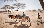 Children carry jerrycans of water on a donkey in the village of Guidan Kaji near the border with Nigeria on the outskirts of Diffa, Niger on February 13, 2016. Displaced people from Niger and Nigeria are sheltering in the village after fleeing at the nearby border. Many of the families had witnessed attacks by Boko Haram in their villages or had fled because of other villages around them being attacked. Caritas undertook a distribution of sleeping covers, mosquito nets, pots and money transfers.