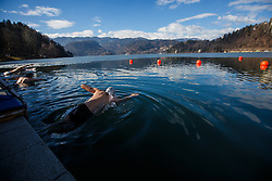 Denis Zvegelj during Bled trophy in winter swimming in lake Bled on 18th of February, 2017, Bled, Slovenia. Photo by Grega Valancic / Sportida