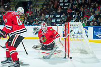 KELOWNA, CANADA - APRIL 8: Cole Kehler #31 of the Portland Winterhawks makes a first period save against the Kelowna Rockets on April 8, 2017 at Prospera Place in Kelowna, British Columbia, Canada.  (Photo by Marissa Baecker/Shoot the Breeze)  *** Local Caption ***