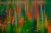 Autumn colored trees reflected in Horseshoe Lake at dusk<br /> Horseshoe Lake<br /> Ontario<br /> Canada