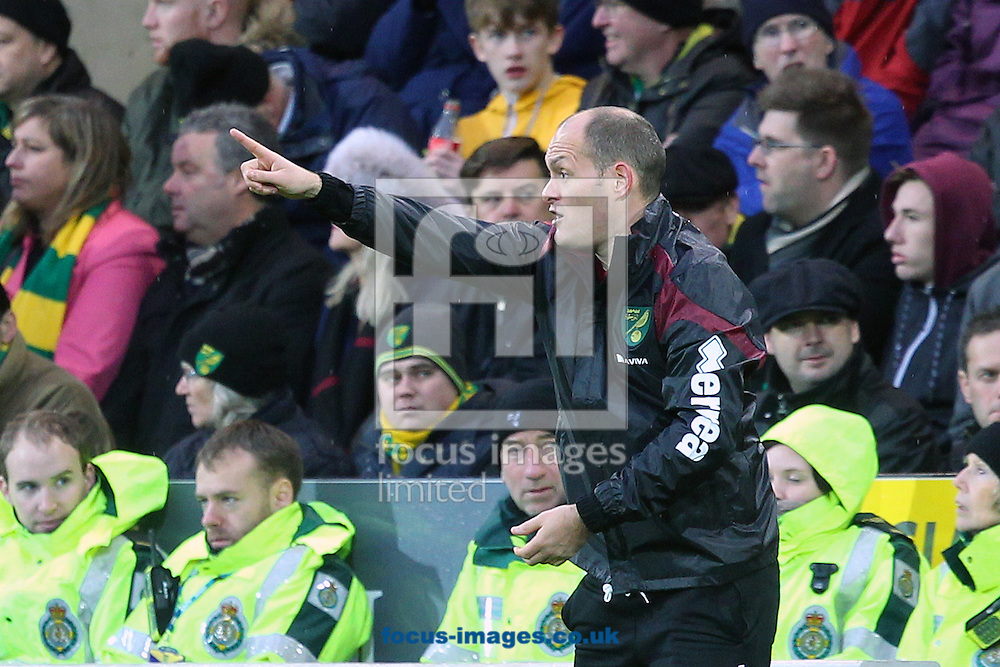 Norwich Manager Alex Neil during the Barclays Premier League match at Carrow Road, Norwich<br /> Picture by Paul Chesterton/Focus Images Ltd +44 7904 640267<br /> 12/12/2015