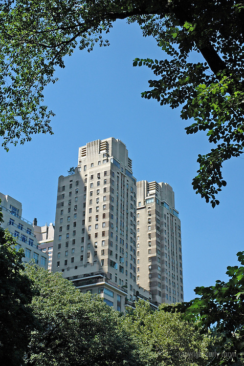 Central Park West buildings framed by tree