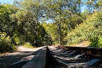 Russia, Sakhalin, Yuzhno-Sakhalinsk. The island of Sakhalin has a narrow-gauge railway network.