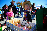 Jackson Burch, 3, stands by his John Deere tractor. The Burch family have won the costume contest the past three years at the Tinley Park Boo Bash. Sunday, October 25th, 2015, in Tinley Park. (Gary Middendorf-Daily Southtown)