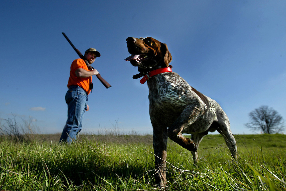 Donald Norris Jr. hunts with his dog Jake in the Lakeview Farms hunting preserve. The hunting preserve has plans for new facilites including a lodge. The project had won Placer County Zoning Administrator approval. Picture taken Wednesday, February 26, 2003 in Sheridan. .