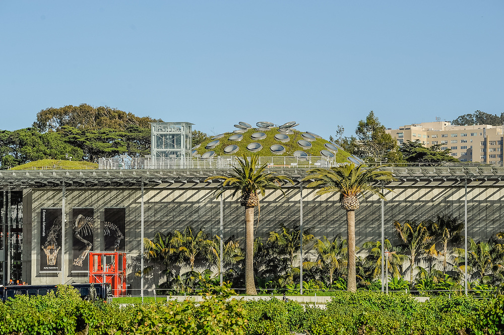 California Academy of Sciences, museum of natural history located in San Francisco's Golden Gate Park, California, designed by Renzo Piano