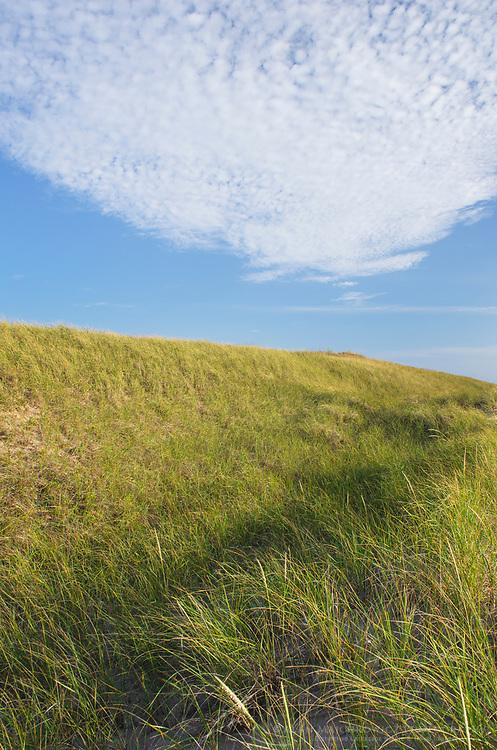 Dunes on the eastern shore of Lake Michigan. Ludington State Park Michigan