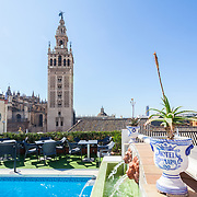 Hotel Doña María_ Renewed areas_Seville