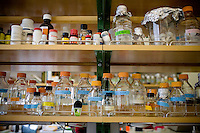 "DAVIS - APRIL 15:  Glass jars and beakers in the lab of Pamela Roland, a plant geneticist, at UC Davis, in Davis, Ca., on Friday, April 15, 2011. Husband and wife team Pamela Ronald, a plant geneticist, and Raoul Adamchak, a bio-gardener, co-authored ""Tomorrow's Table: Organic Farming, Genetic and the Future of Food."""