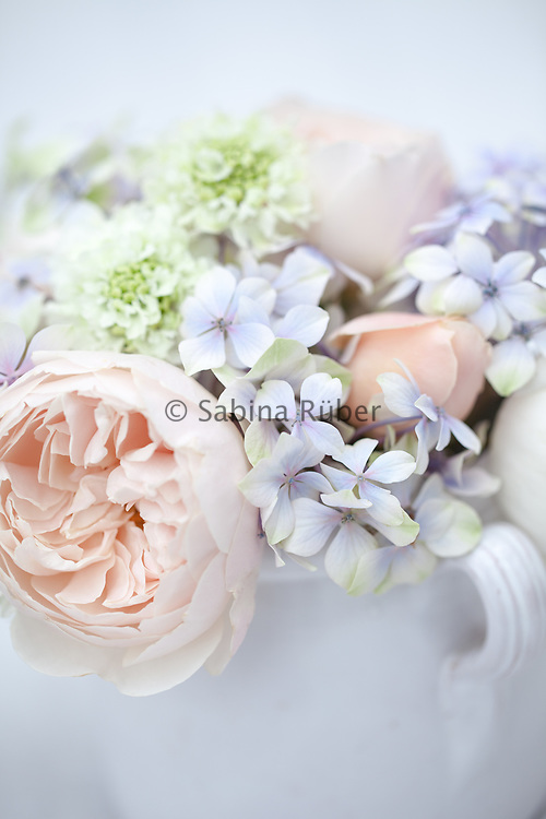 Small flower arrangement with English Roses, Hydrangea and white Scabious