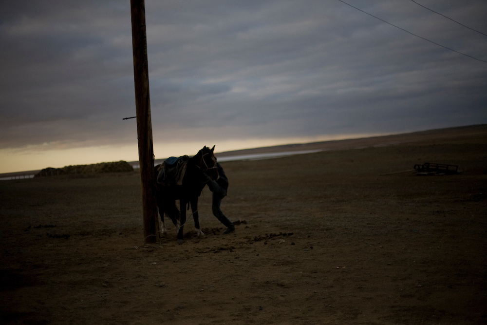 CREDIT: DOMINIC BRACCO II..SLUG:PRJ/KAZAKHSTAN SHEEP HERDERS..DATE:10/23/2009..CAPTION:Zhumatai Muzdybayev saddles his horse to go out and find his sheep near Semey, Kazakhstan. The herders live near a radio active lake which was made during the 1970s as part of an experiment by the USSR to create lakes from atomic bombs. The lake is in an area known as The Polygon, a test site for more than 400 of the Soviet Union's nuclear weapons.