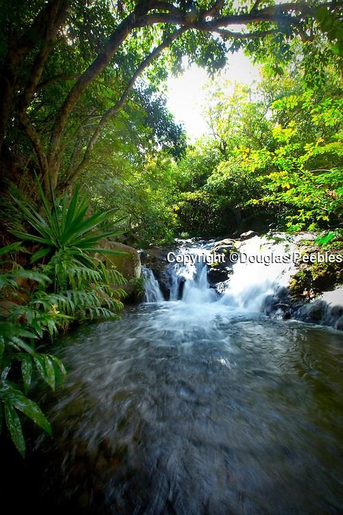 Ginger Pools, Kalalau Valley Stream, Napali Coast, Kauai, Hawaii