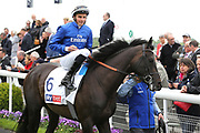 Hamada ridden by jockey William Buick the Winner of The Sky Bet Jorvik Handicap Stakes over 1m 4f (£50,000) in the Parade Ring before the race at the York Dante Meeting at York Racecourse, York, United Kingdom on 16 May 2018. Picture by Mick Atkins.