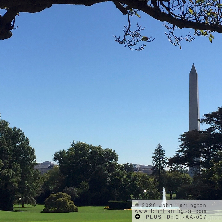 The view from the Rose Garden towards the South Lawn, with the Washington Monument in the distance.