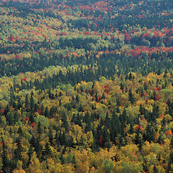 Baxter State Park, ME. Blazing fall colors in Baxter's Wassataquoik Valley. Northern Hardwood Forest.