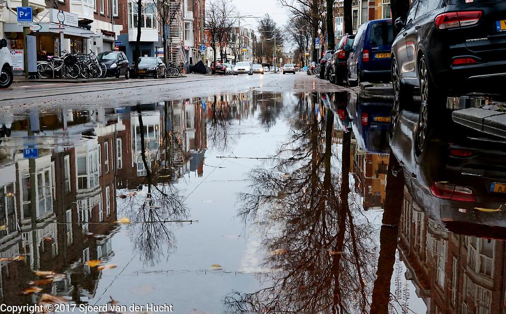 Westduinpark, Den Haag - Westduinpark. The Hague, Netherlands