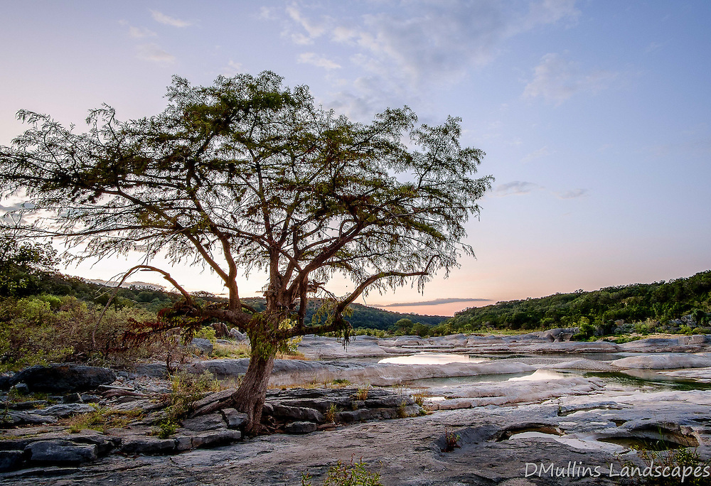 Cypress tree sunrise at Pedernales Falls State Park.<br /> <br /> Available Size: 7x11, 13x19, 16x24