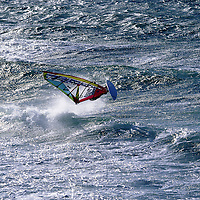 WINDSURF HOLMBERG<br />