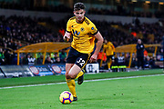 Wolverhampton Wanderers midfielder Leander Dendoncker (32) on loan from Anderlecht in action  during the Premier League match between Wolverhampton Wanderers and Newcastle United at Molineux, Wolverhampton, England on 11 February 2019.